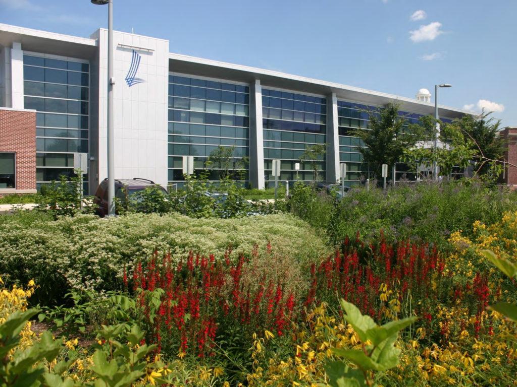 Lansdale Municipal Complex rain garden